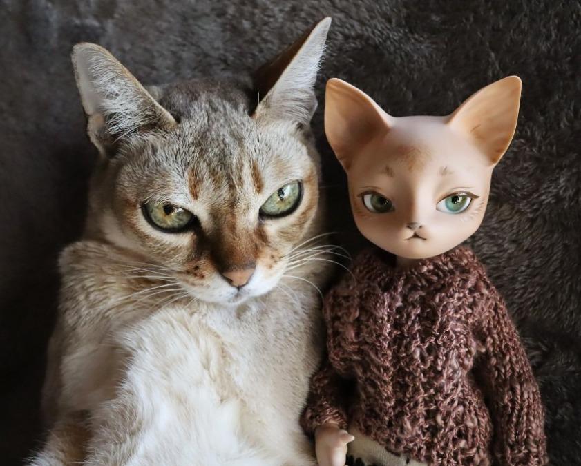 猫とドール