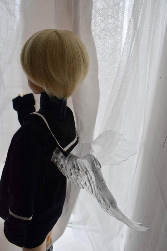 透明な翼と凱久