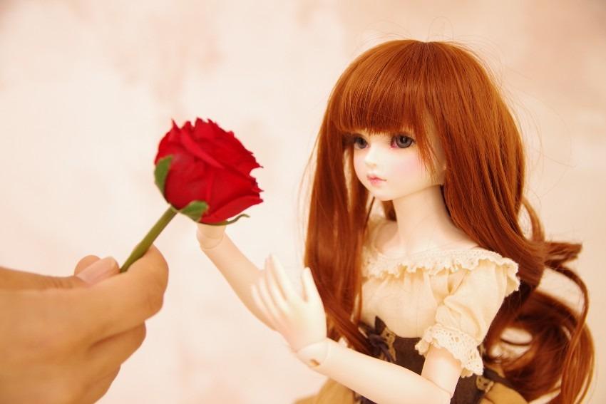 【創作:一輪の薔薇の花言葉を】撮影オフショ