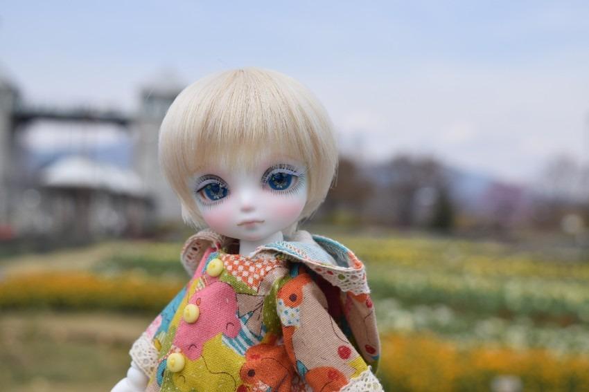 にこ(Nico)