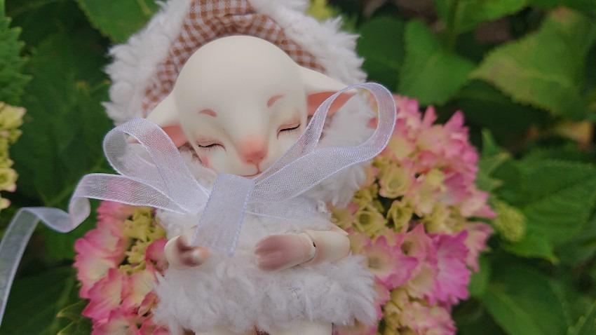 Flower*Flower